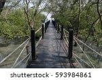 bridge in the mangrove wood... | Shutterstock . vector #593984861