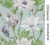 beautiful  bright  gentle ... | Shutterstock .eps vector #593990321