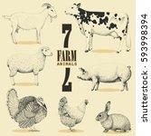 7 farm animals hand drawn on... | Shutterstock .eps vector #593998394