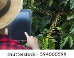 farmer using digital tablet...   Shutterstock . vector #594000599