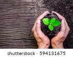 two hands of men was carrying a ... | Shutterstock . vector #594131675