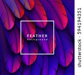 Colorful Feathers Background....