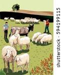 flock of sheep  shepherds  mule