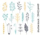 botanical doodle color... | Shutterstock .eps vector #594216449