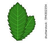 elm leaf icon. cartoon... | Shutterstock . vector #594302354