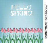 hello spring. spring card with... | Shutterstock .eps vector #594337967