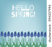 hello spring. spring card with... | Shutterstock .eps vector #594337994
