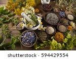 natural medicine  herbs  mortar ... | Shutterstock . vector #594429554