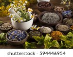 natural medicine  herbs  mortar ... | Shutterstock . vector #594446954