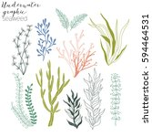 Seaweed Graphic Collection