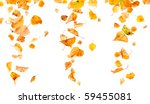autumn leaves falling and... | Shutterstock . vector #59455081