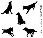 Stock photo black silhouettes of an alsatian german shepherd dog in various poses on a white background 59462989