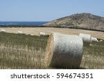 field of large round hay bales...   Shutterstock . vector #594674351