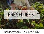 100  nature organic freshly... | Shutterstock . vector #594757439