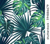 tropical background with jungle ... | Shutterstock .eps vector #594886679