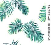 tropical background with jungle ... | Shutterstock .eps vector #594886751