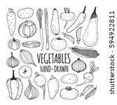 set hand drawn vegetables.... | Shutterstock .eps vector #594922811
