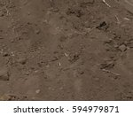 dry cracked earth texture.... | Shutterstock .eps vector #594979871