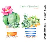 watercolor handpainted... | Shutterstock . vector #595045631