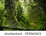 nepal jungle | Shutterstock . vector #595063421