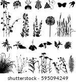 Botany Plants And Flowers