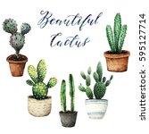 watercolor illustration  cactus ... | Shutterstock . vector #595127714