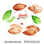 watercolor illustration of...   Shutterstock . vector #595133114