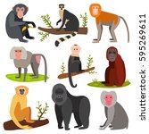 different breads monkey... | Shutterstock .eps vector #595269611