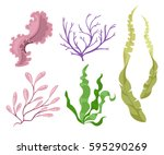 sea plants and aquatic marine... | Shutterstock .eps vector #595290269