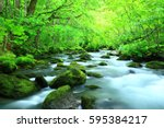 oirase stream in summer | Shutterstock . vector #595384217