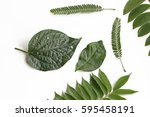 green leaves on white... | Shutterstock . vector #595458191