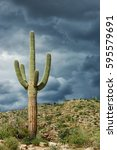 Small photo of Saguaro cactus against a stormy monsoon sky