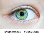 beautiful green eyes with... | Shutterstock . vector #595598081