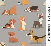different dogs breed cute puppy ... | Shutterstock .eps vector #595653869