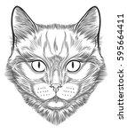 cat portrait hand drawn in... | Shutterstock .eps vector #595664411