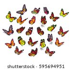 big set monarch butterfly... | Shutterstock . vector #595694951