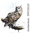 owl birds wildlife predator... | Shutterstock . vector #595723115