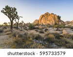 Joshua Tree National Park At...