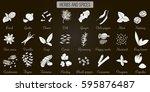 big vector set of popular... | Shutterstock .eps vector #595876487