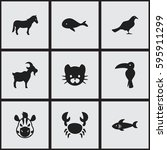set of 9 editable zoology icons....