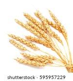 golden wheat isolated on white... | Shutterstock . vector #595957229