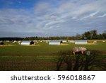 pig farm   Shutterstock . vector #596018867