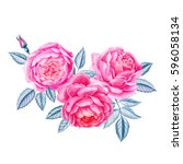 watercolor hand painted roses... | Shutterstock . vector #596058134