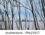 Snowy winter landscape with trees and blue sky, Po valley, Italy - stock photo