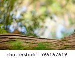 brown wood log with abstract... | Shutterstock . vector #596167619