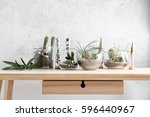 florarium in glass vases with... | Shutterstock . vector #596440967