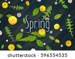 spring flowers top view on... | Shutterstock . vector #596554535