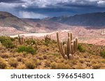 high altiplano plateau  eduardo ... | Shutterstock . vector #596654801