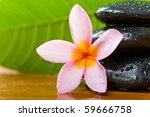 Shoot of spa massage tool - stock photo