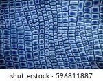 Crocodile Leather Texture...